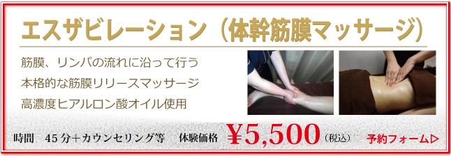 エスザビレーション(体幹筋膜マッサージ)(45分)