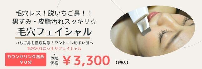 ベーシック美顔+オイルアップ(皮脂づまりスッキリ)(60分)