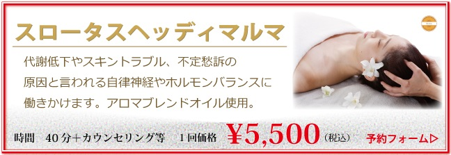 シャンティーテラピー(50分)